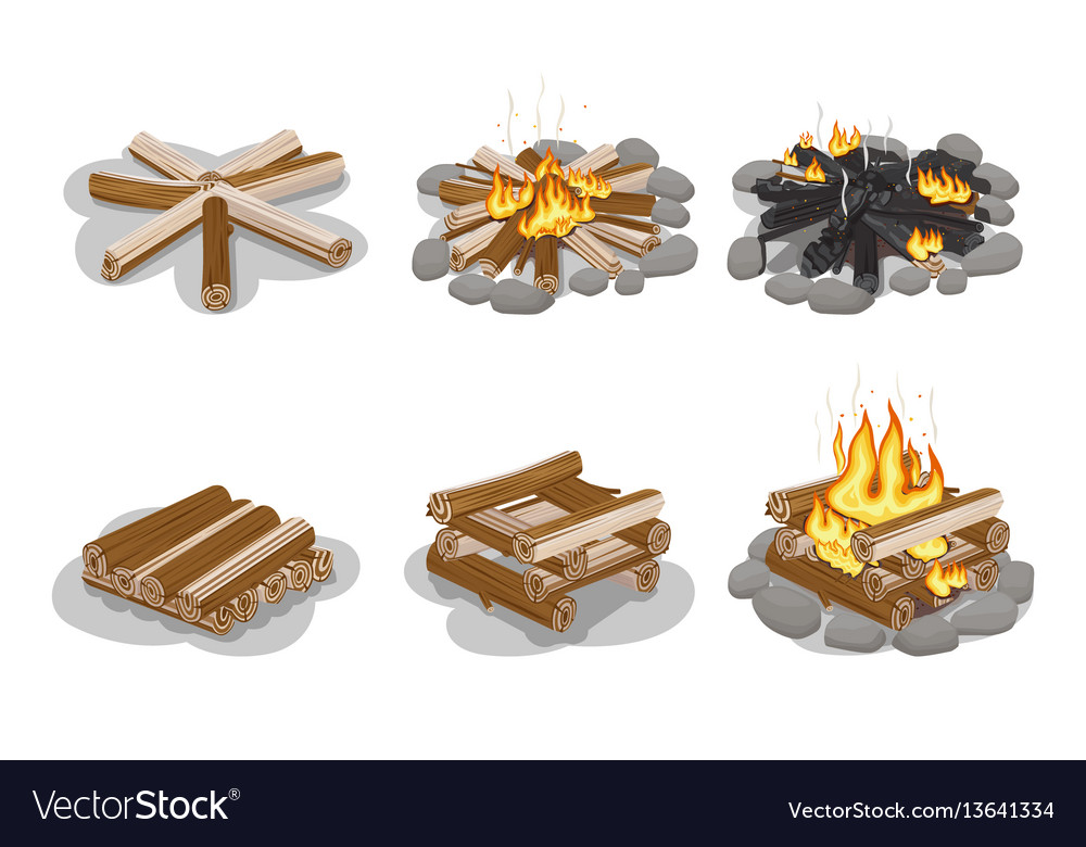 Gathered firewood collection for making bonfire vector image