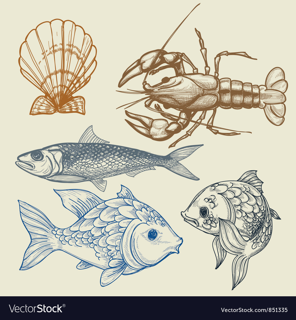 Fish lobster shell set Vector Image