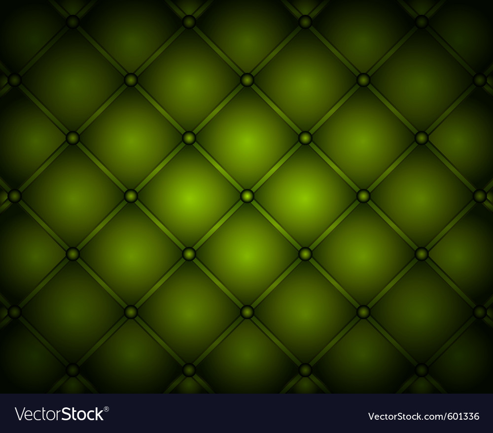 Luxury leather vector image