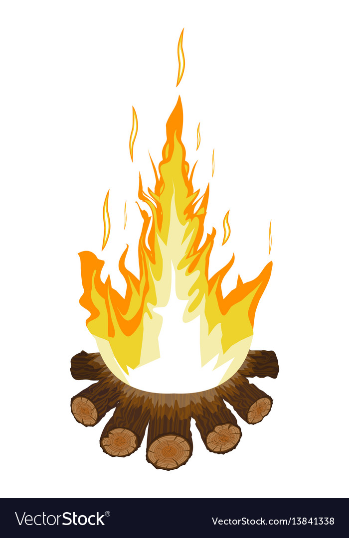 Burning bonfire or campfire logs and fire vector image