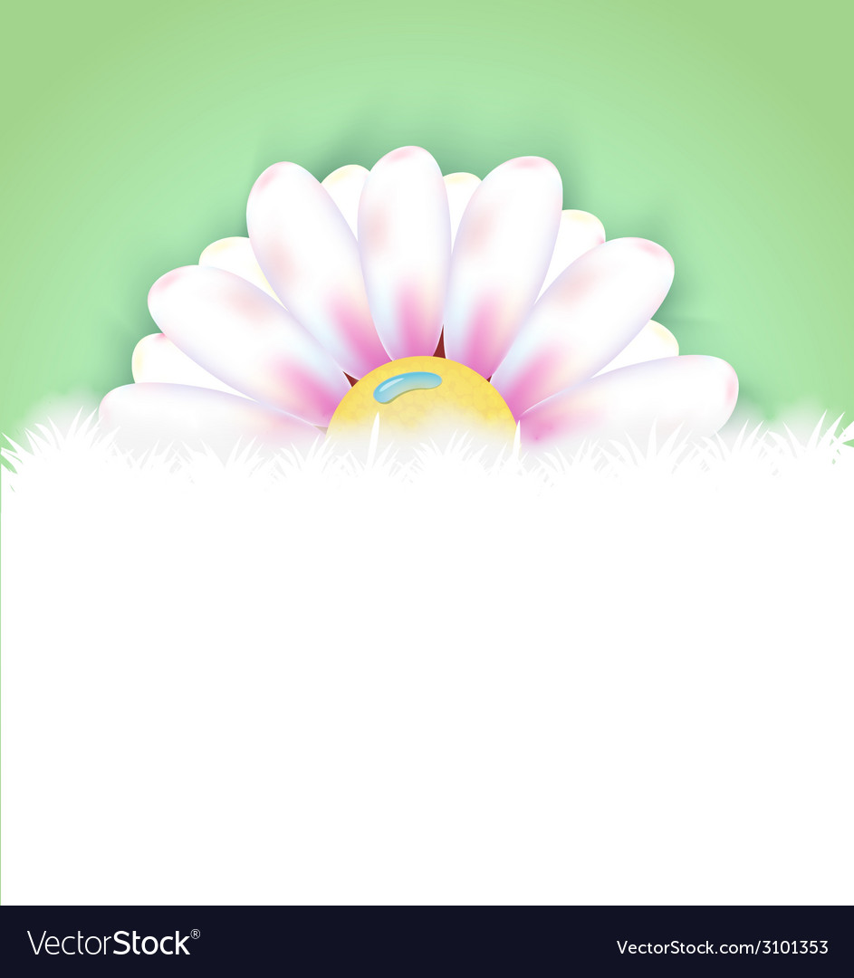 Realistic flower vector image