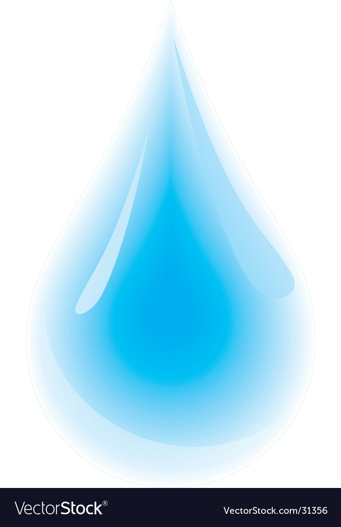 Water droplet vector image