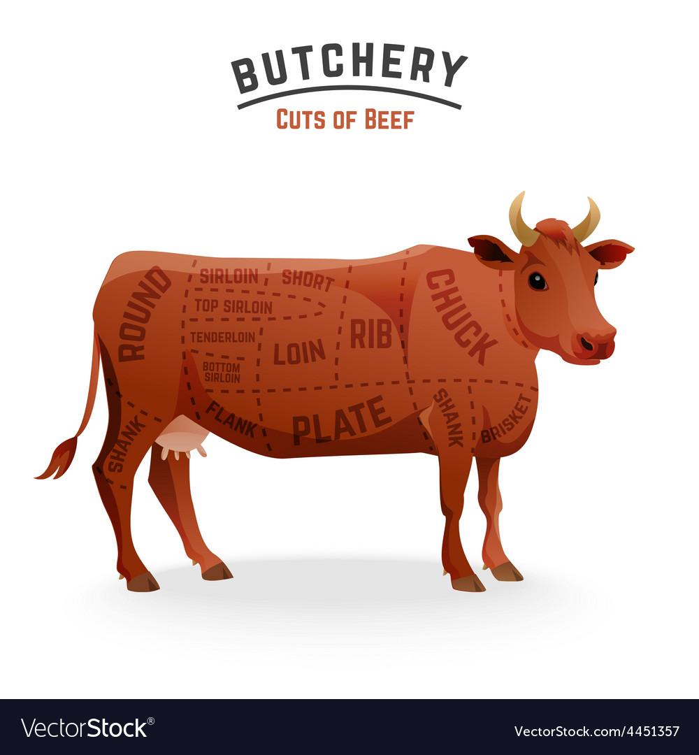 Beef cuts diagram royalty free vector image vectorstock beef cuts diagram vector image pooptronica