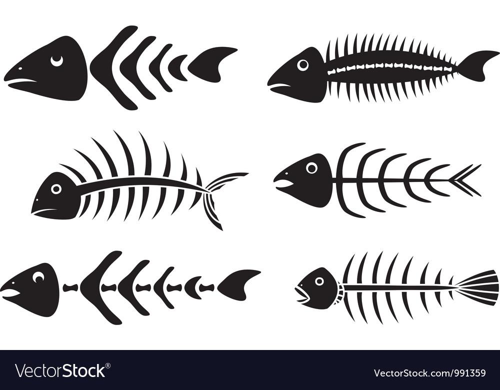 Various fishbones stencils vector image