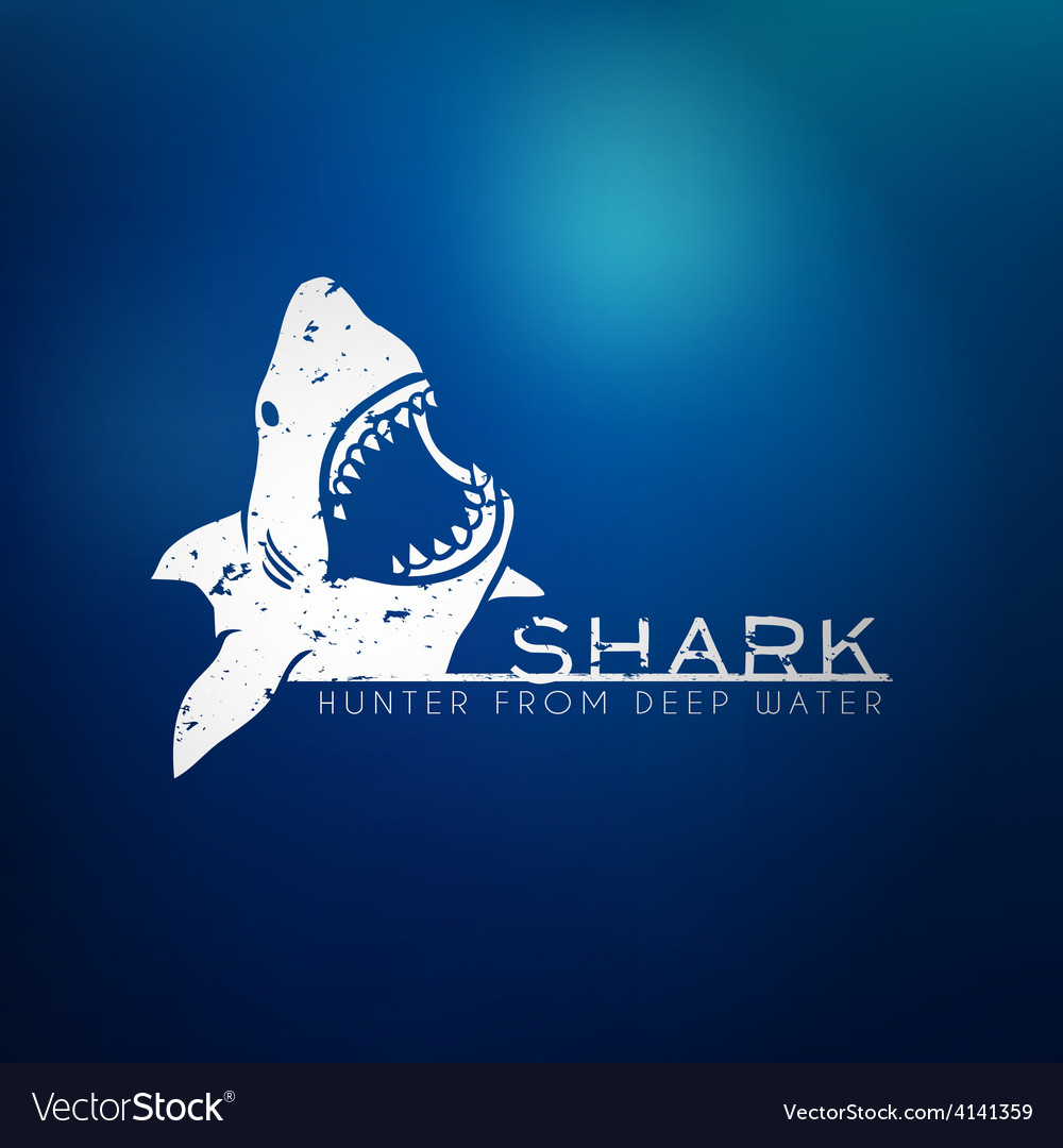 Shark concept vector image