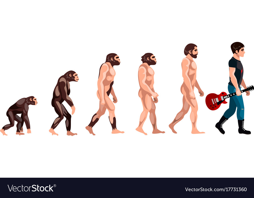 Evolution from monkey to musician vector image