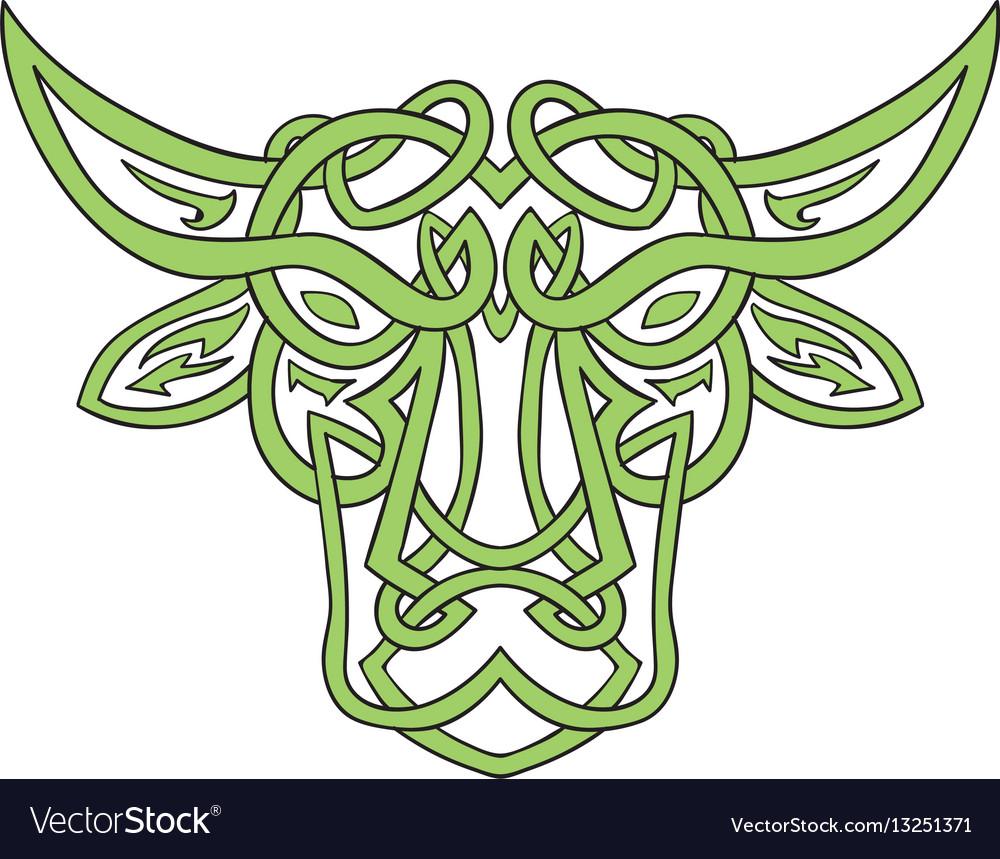 Taurus bull celtic knot vector image