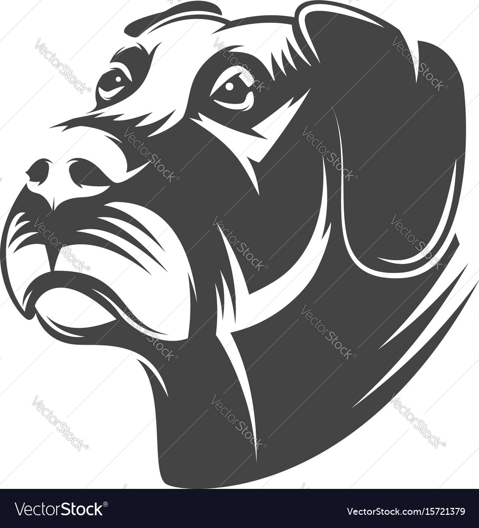 Dog head isolated on white background vector image