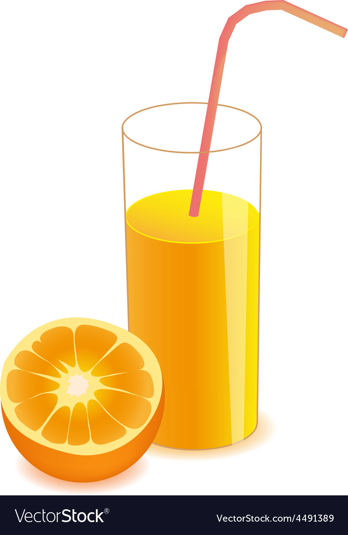 Half orange and orange juice on glass vector image