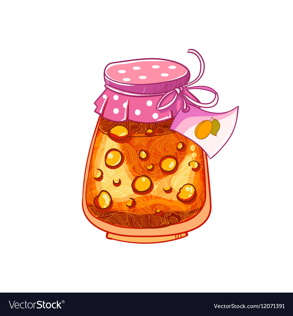 Jar of Apricot or peach vector image