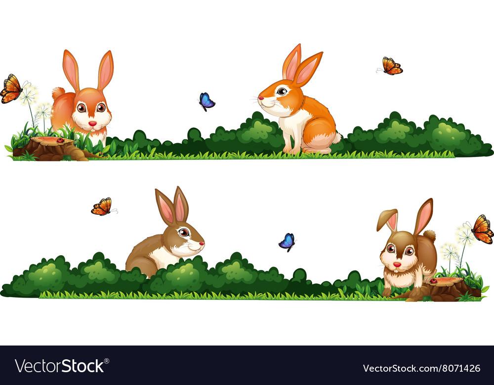 Rabbits being happy in the garden vector image
