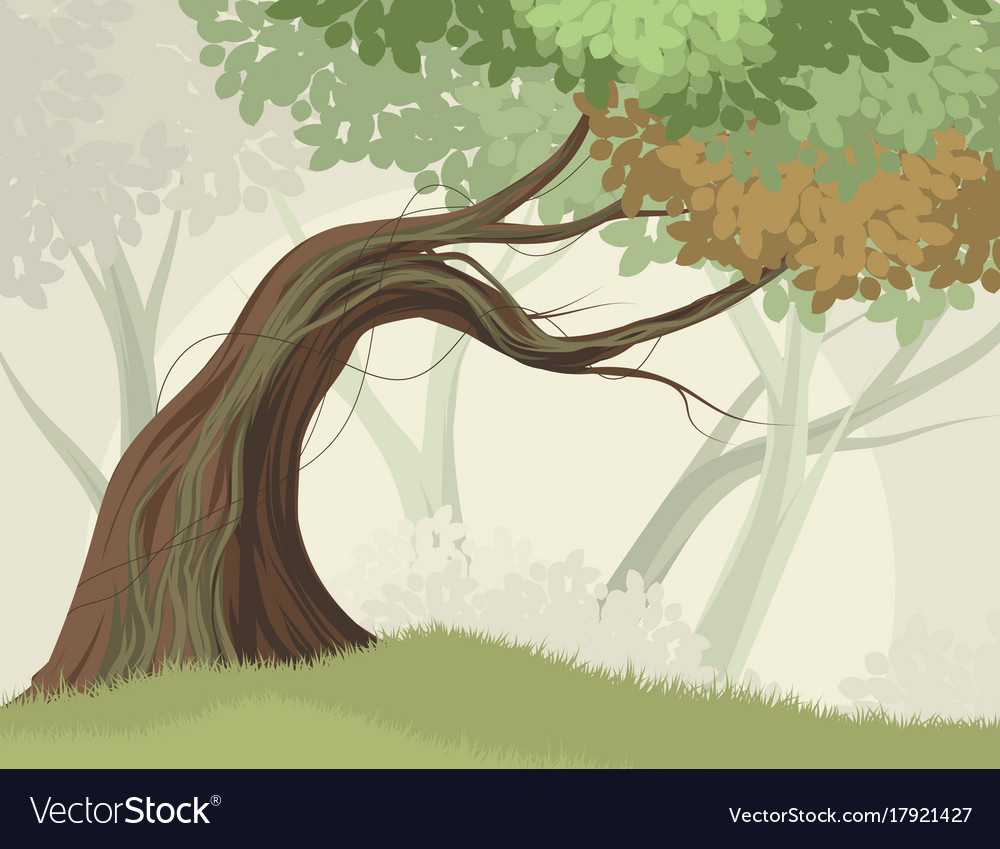 Tree and forest scene