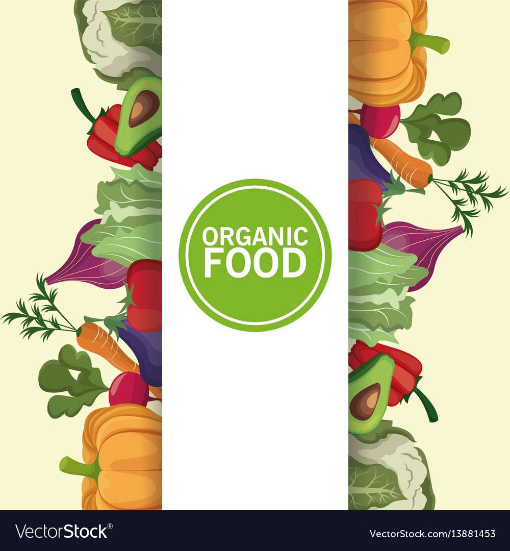 Organic food nutrition vitamins diet vector image