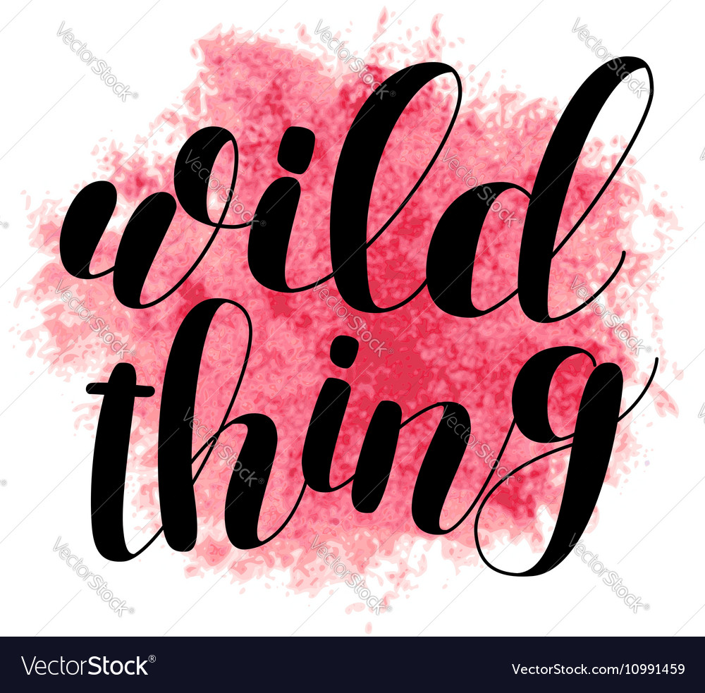 Wild thing Brush lettering vector image