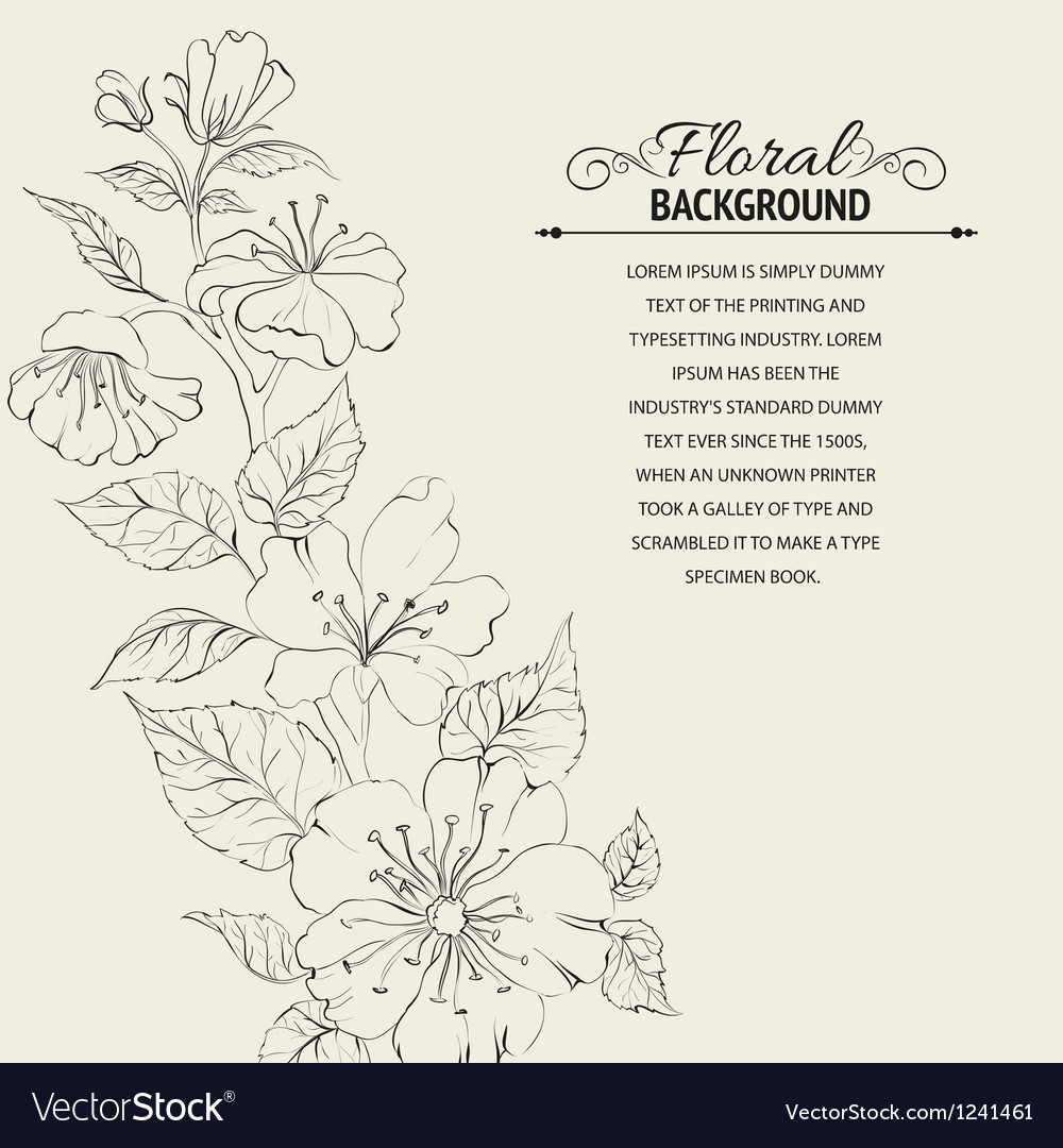 Scatch of spring sakura vector image