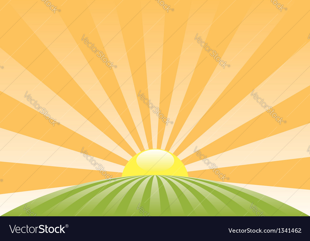 Sun sky retro meadow roundN vector image
