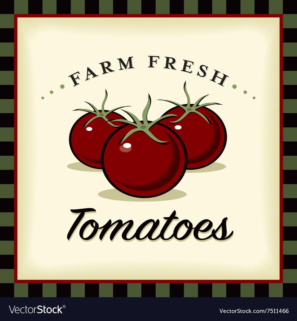 Farm Fresh Tomatoes vector image