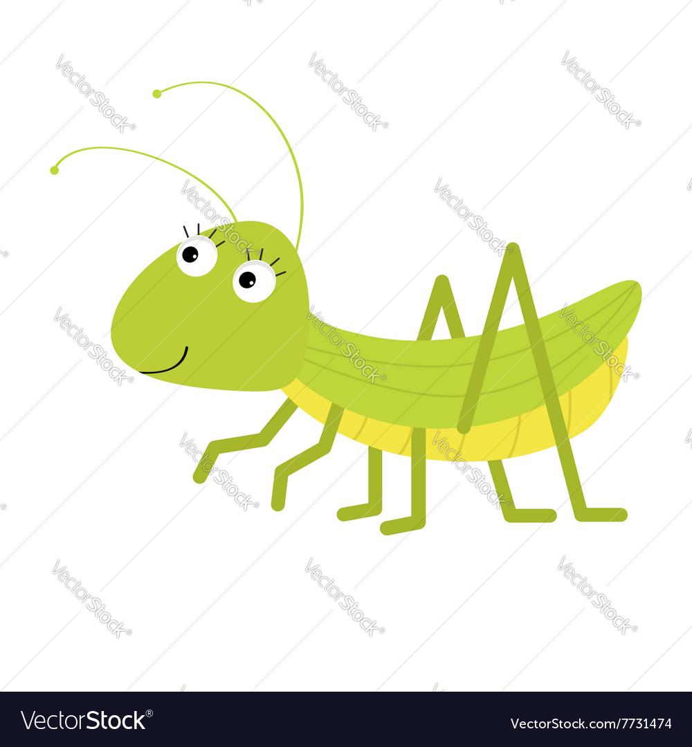Grasshopper Cute cartoon character White vector image