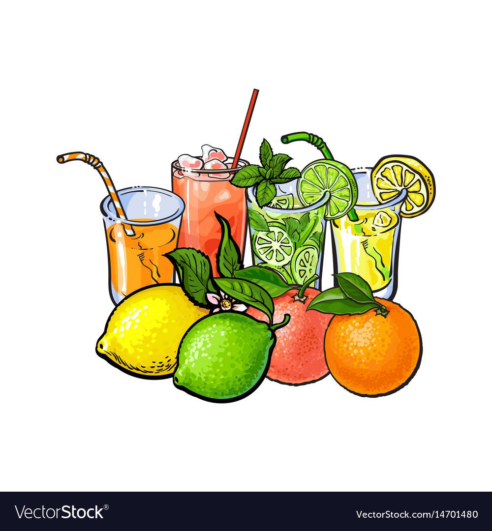 Orange grapefruit lime lemon juice and whole vector image
