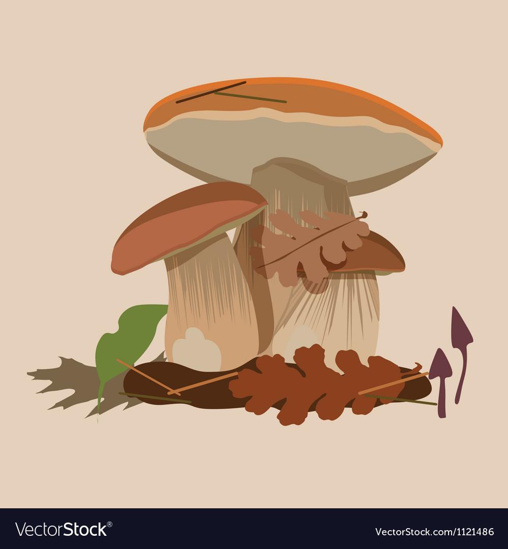 Big forest mushrooms vector image