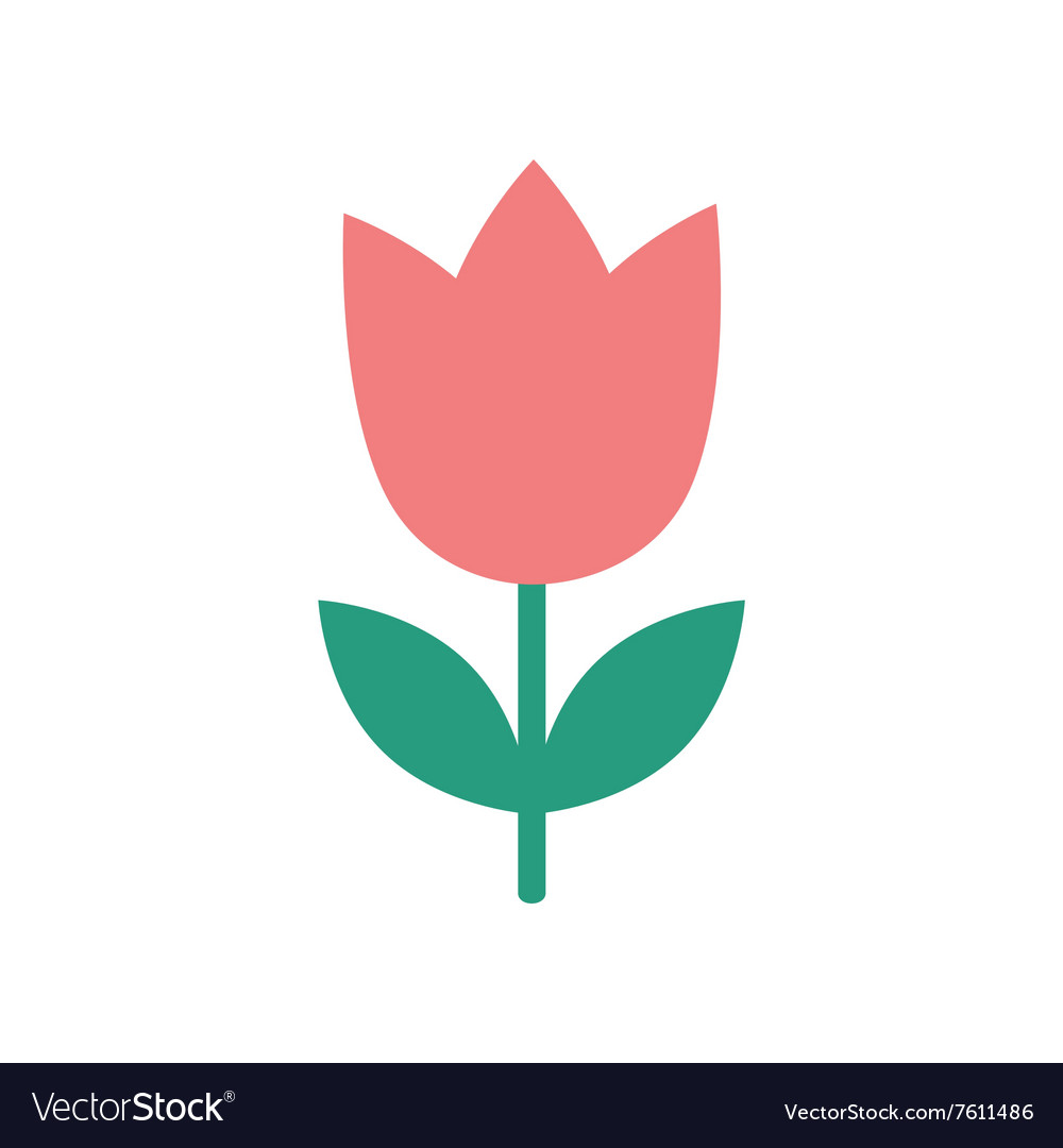 Flat icon on white background tulip blooms