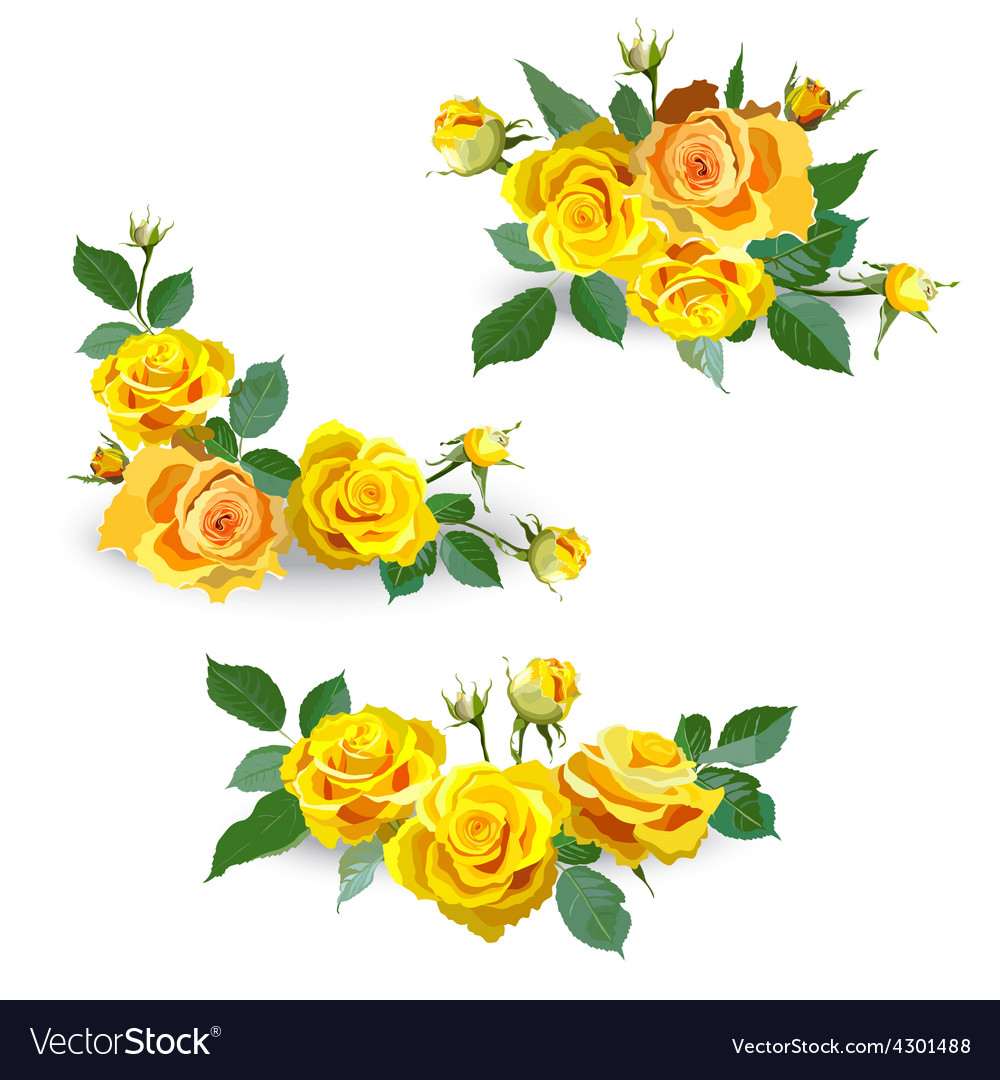 Wallpaper Of Yellow Rose: Floral Background With Yellow Roses Royalty Free Vector