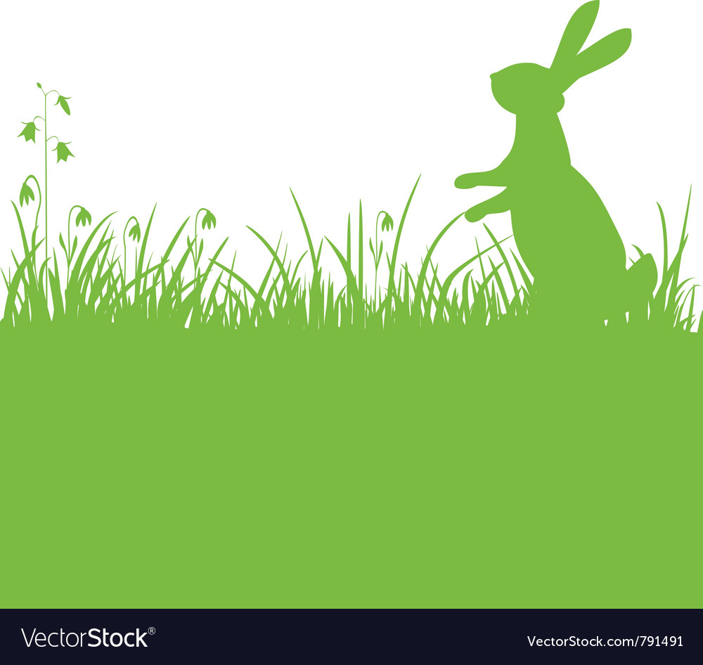 Easter bunny green background vector image