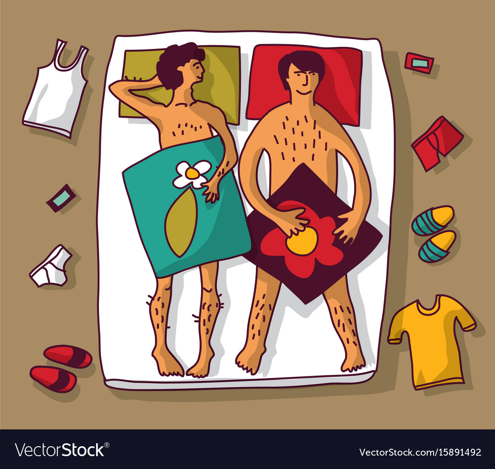 Gay homosexual naked man couple in bad vector image