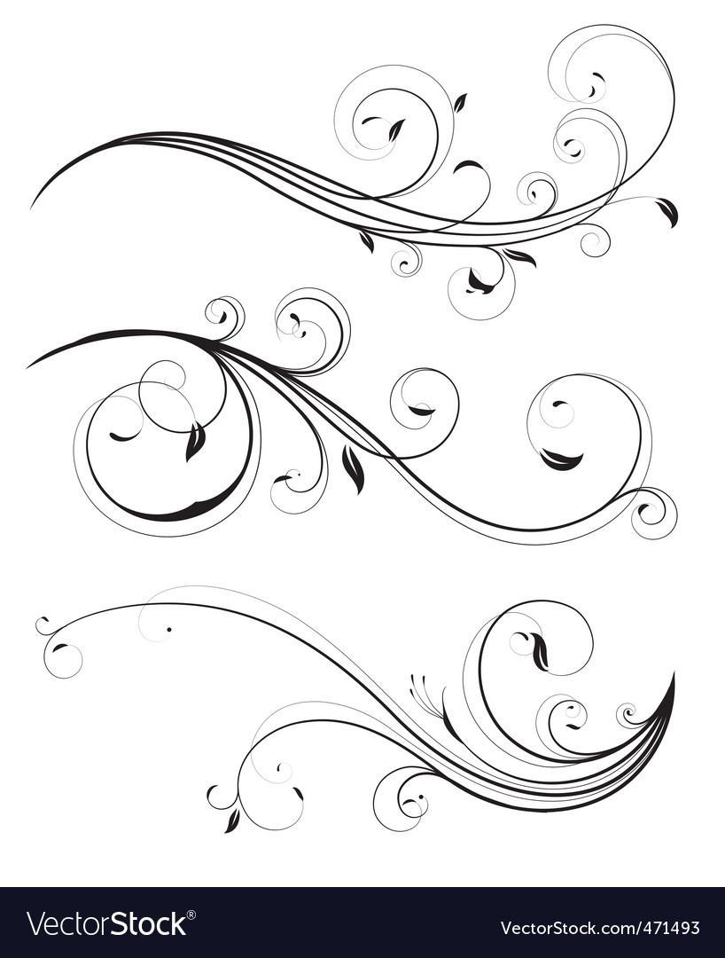 Floral elements vector image