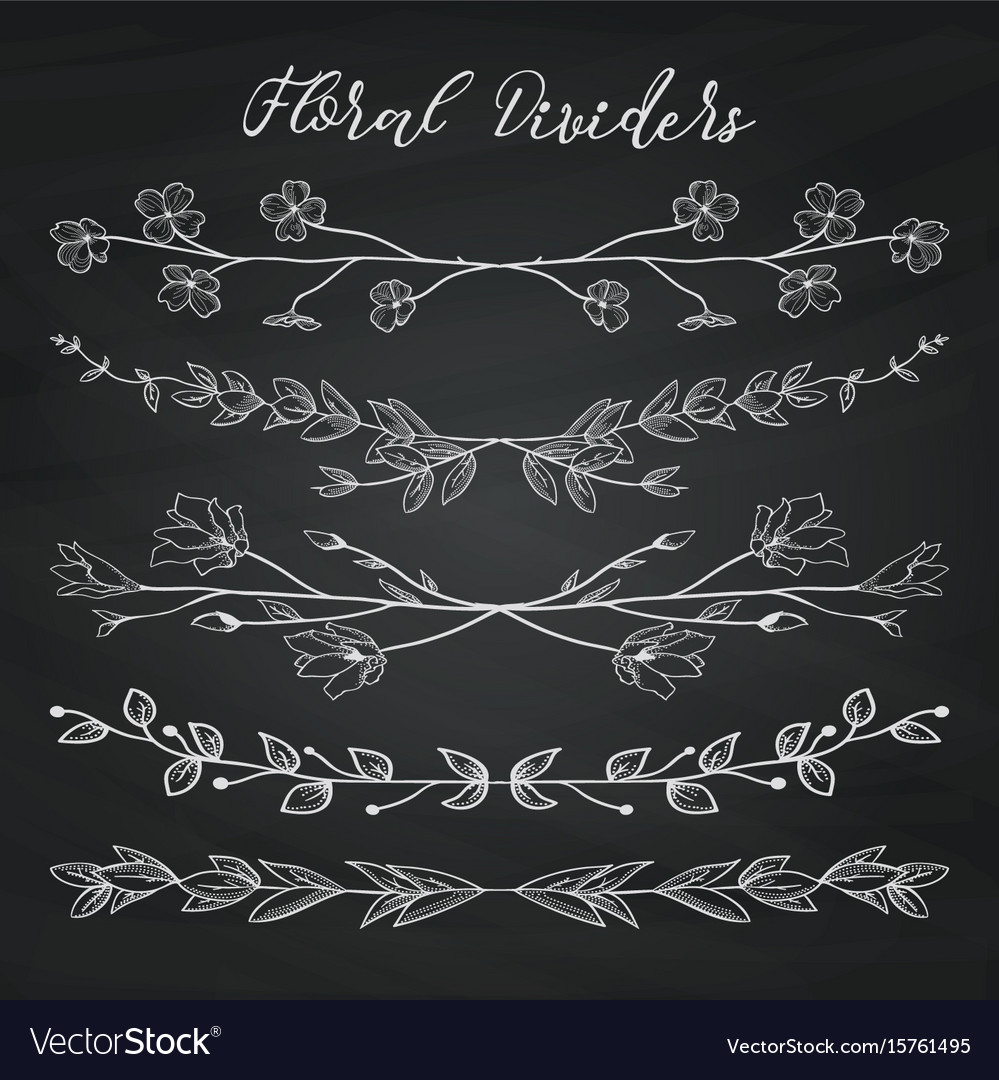 Chalk drawing dividers with branches plants and vector image