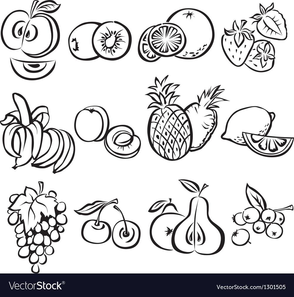 Stylized fruit set on a white background vector image