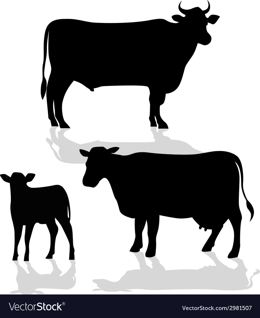 Cow Family Silhouette with Shadow vector image