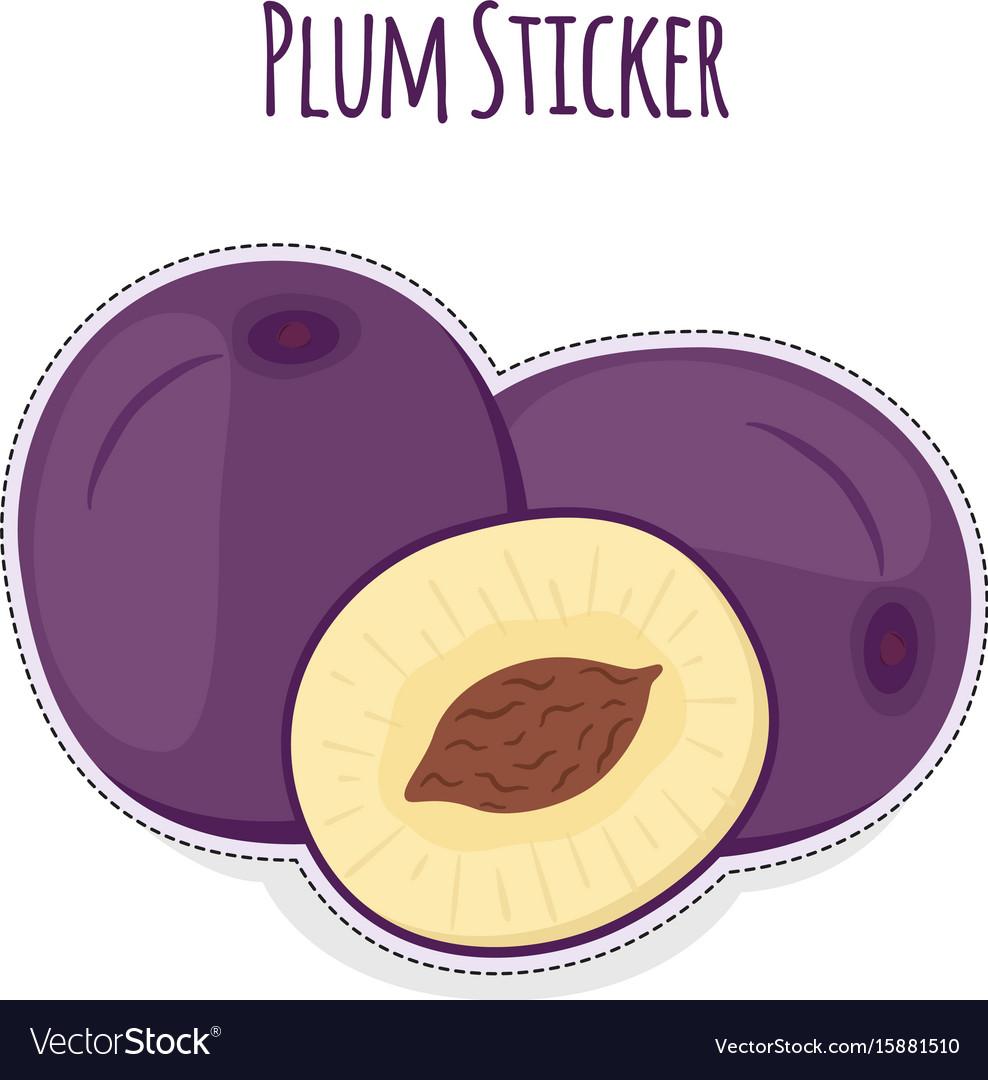 Whole and half of ripe purple plum sticker vector image