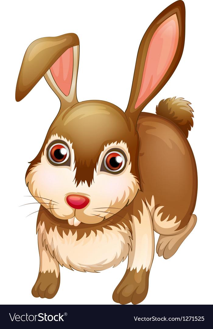 A big brown bunny vector image