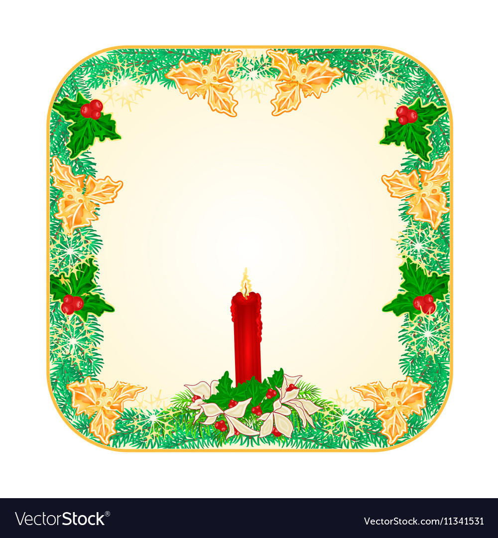 Banner square button Christmas Spruce vector image