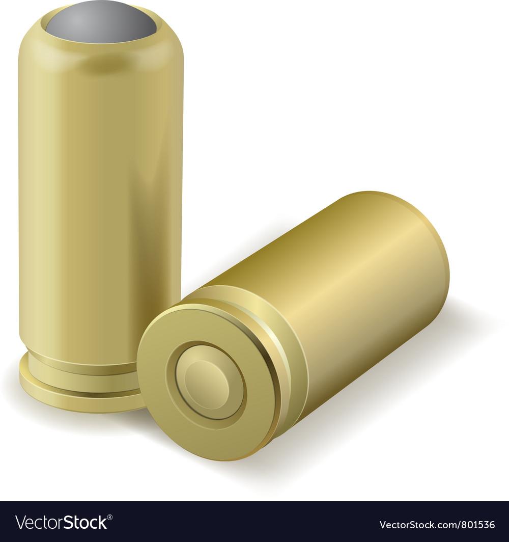 Pair bullets vector image