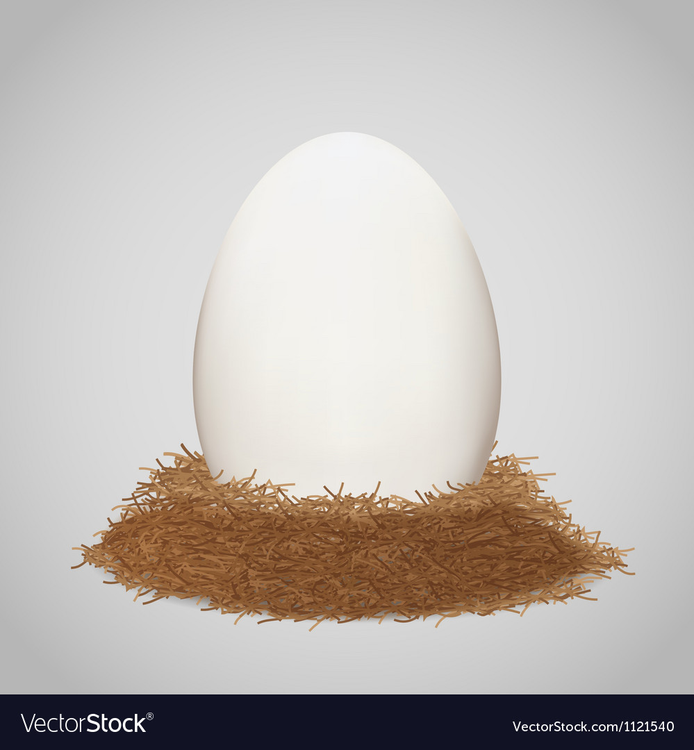 Egg in the nest vector image