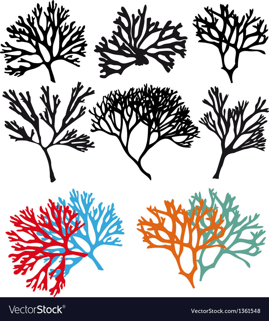Coral reefs set vector image