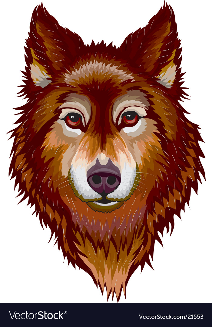 Portrait of wolf vector image