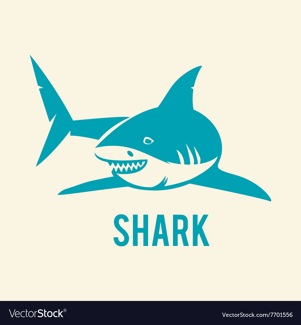 Shark - vector image