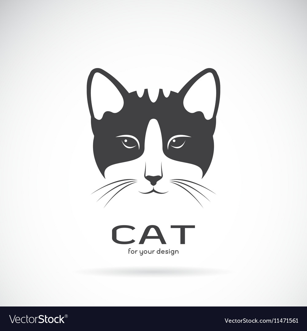 Image of an cat face design vector image
