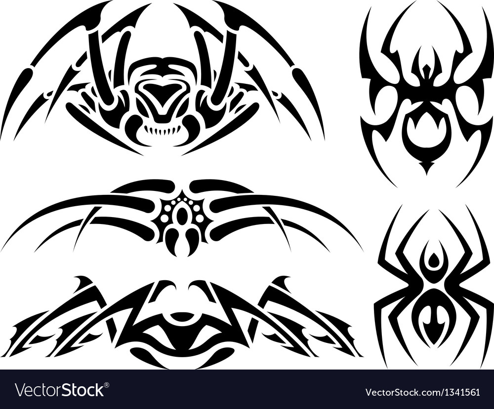 Spider tattoos vector image