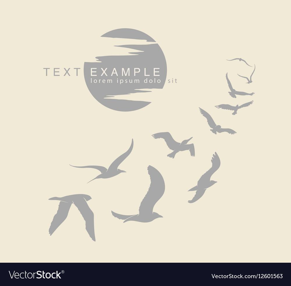 Wedge of birds flying in sky vector image