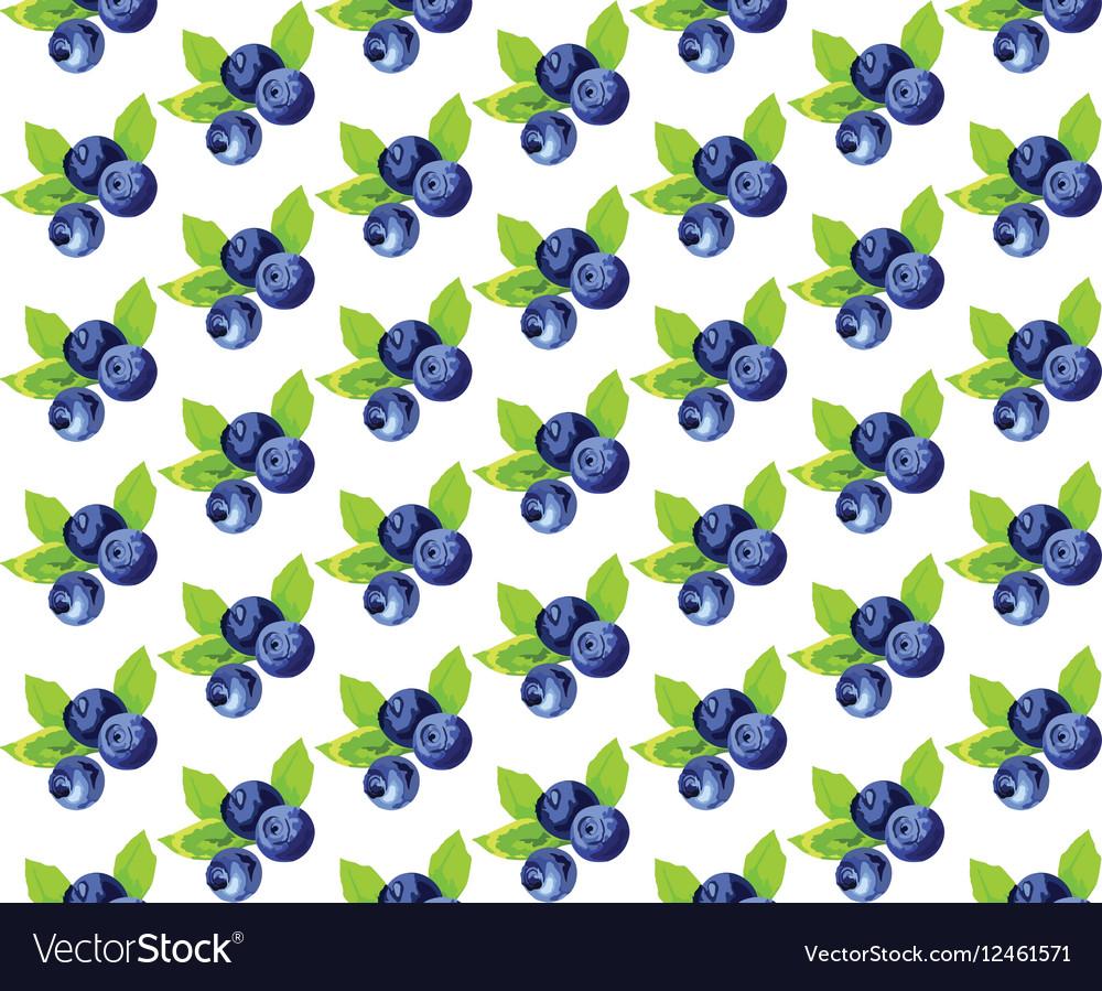 Blueberries Vintage pattern vector image