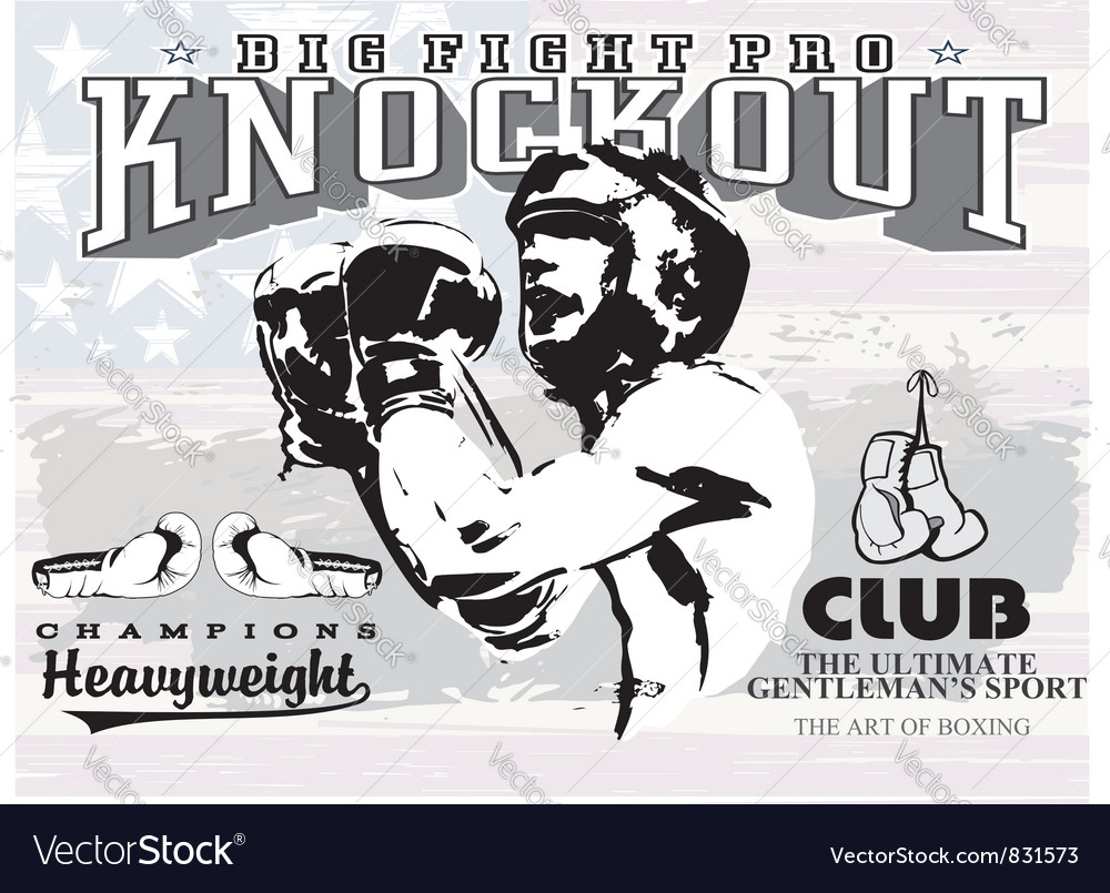 Boxing knockout vector image