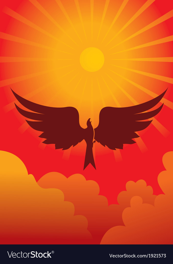 Eagle in sun vector image