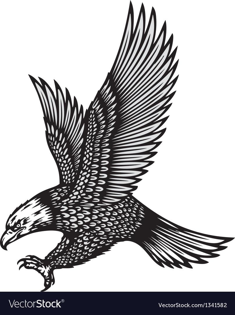 Eagle attack vector image