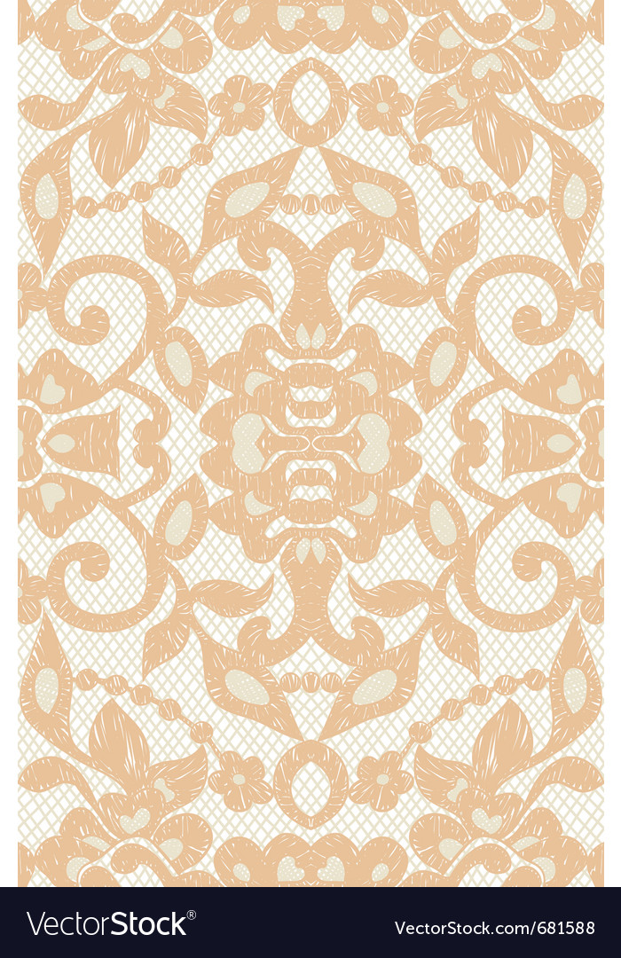 Beautiful floral beige lace vector image