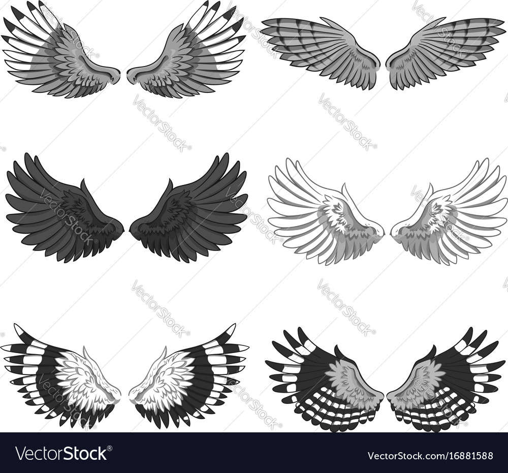 Collection of 6 pairs of elegant bird or angel vector image