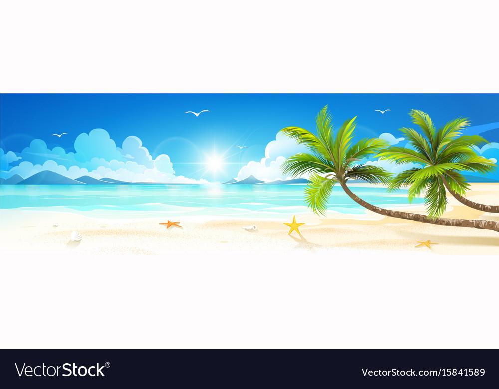 Summer holidays on tropical beach vector image